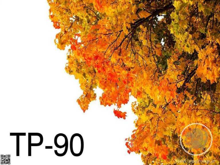 نمونه سقف آسمان مجازی پاییز