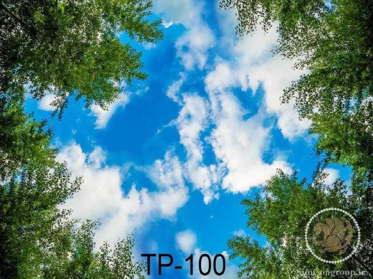 نمونه سقف آسمان مجازی آسمان آبی