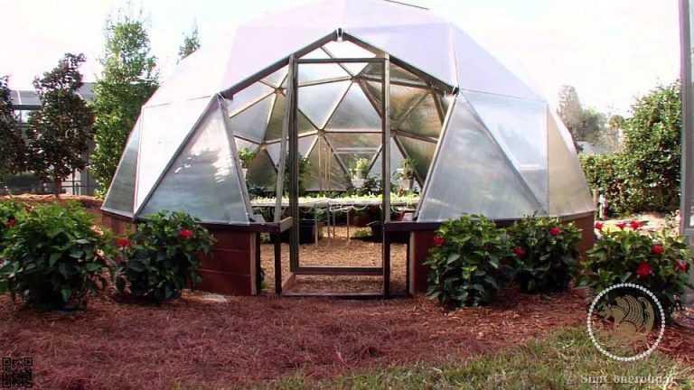 گلخانه شیشه ای در محوطه سازی حیاط